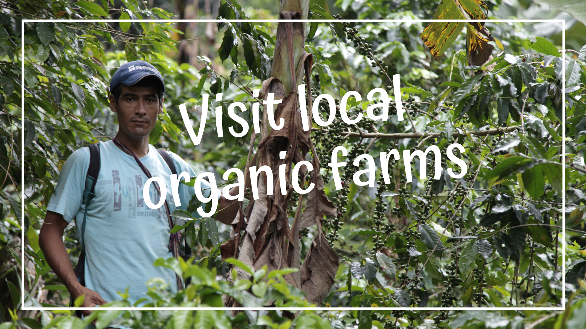 Visit local organic farms